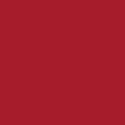 Servet 24 x 24 cm 2 laags rood 300 stuks opdienen