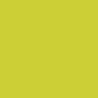 Servet 24 x 24 cm 2 laags kiwi 300 stuks opdienen